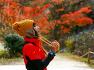 전북 순창트레킹/ 강천산 진한 1만그루 애기단풍 빛의 터널 걸어볼까!!【19년11월12일】